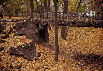 Парк Института педиатрии, акушерства и гинекологии - место для фотосессии в Киеве - портфолио 1