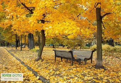 Городской сад - место для фотосессии в Киеве - портфолио 2