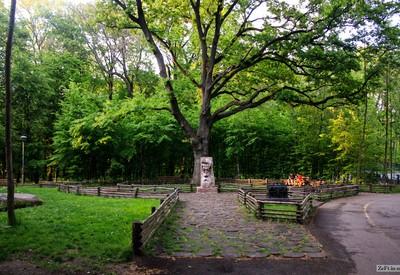 Бучанский городской парк - место для фотосессии в Херсоне - портфолио 4