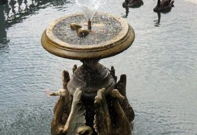 Сквер Лебединое озеро - фото 2