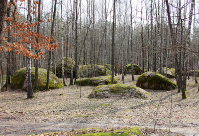 Каменное село - фото 3