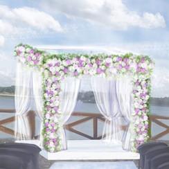 Дофине - выездная церемония в Кривом Роге - фото 3