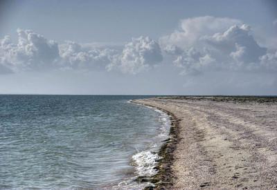 Бирючий остров - место для фотосессии в Херсонской области - портфолио 1