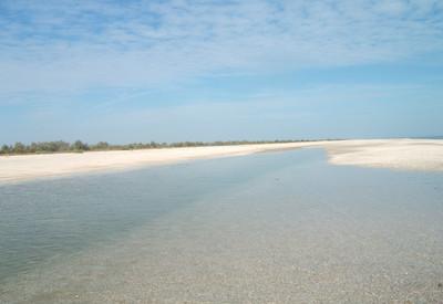 Бирючий остров - место для фотосессии в Херсонской области - портфолио 4