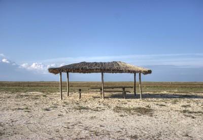 Бирючий остров - место для фотосессии в Херсонской области - портфолио 6