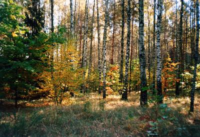 Ичнянский национальный природный парк - фото 1