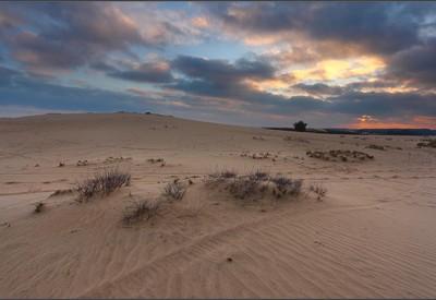 Кицевская пустыня - место для фотосессии в Харьковской области - портфолио 6