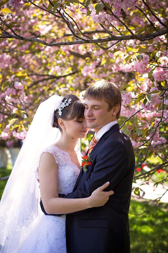 Свадьба Виктора и Ольги - фото №2
