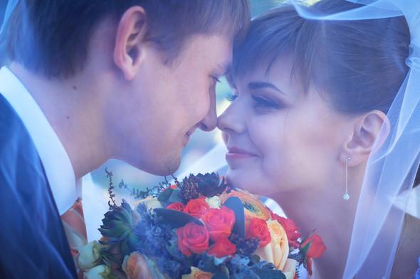 Свадьба Виктора и Ольги - фото №12