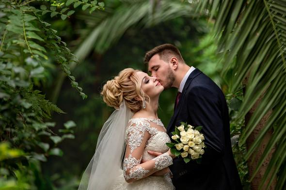 Свадьба Тани и Богдана - фото №1