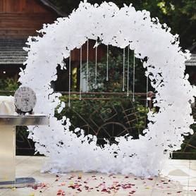 Декоратор, флорист Свадьба Вашей мечты
