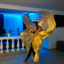 Elena Voinych - артист, шоу в Умани - фото 2