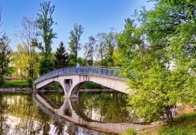 Городское озеро - фото 2