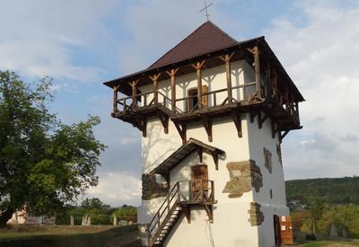 Бушанская башня - фото 1