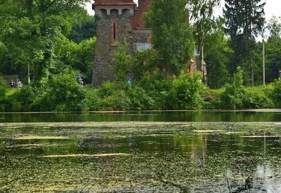Костёл Святой Клары - место для фотосессии в Житомирской области - портфолио 1