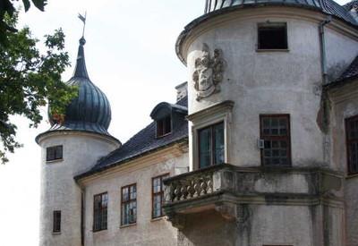 Дворец Нарышкиных-Шуваловых - место для фотосессии в Черкасской области - портфолио 6