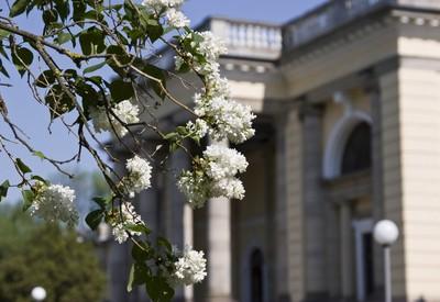 Немировский дворец княгини Щербатовой - место для фотосессии в Винницкой области - портфолио 4