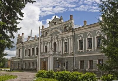 Президентский Дворец в селе - фото 1