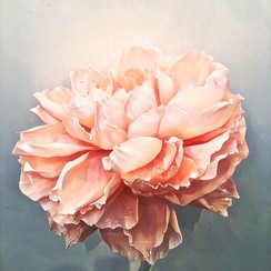 Paper Flora - фото 3