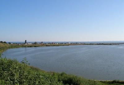 Новая Дофиновка. Лиман - место для фотосессии в Одесской области - портфолио 5