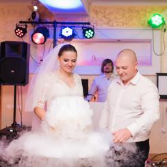 Inna GRAND Viva_duet - ведущий в Николаеве - фото 4