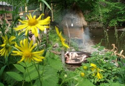 Чаны Закарпатья - место для фотосессии в Закарпатской области - портфолио 6
