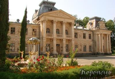 Дворец графа Бадени - фото 1