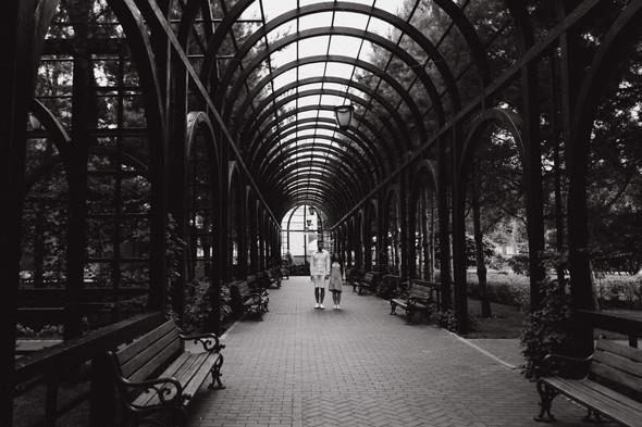 Илья+Анастасия - фото №4