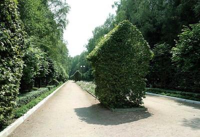 Украинский Баден-Баден - место для фотосессии в Винницкой области - портфолио 5