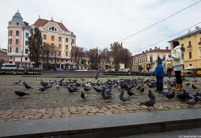 Площадь Филармонии - место для фотосессии в Черновцах - портфолио 3