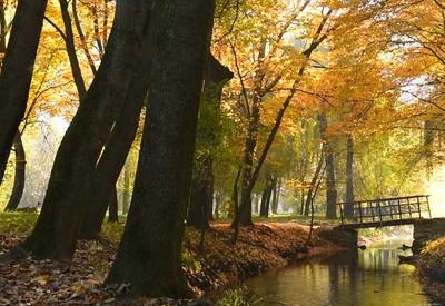 Гидропарк Топильче - место для фотосессии в Тернополе - портфолио 2