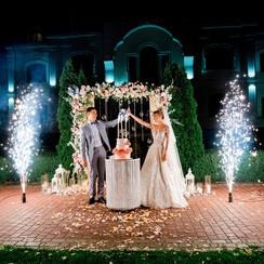 Iris - свадебное агентство в Киеве - фото 3