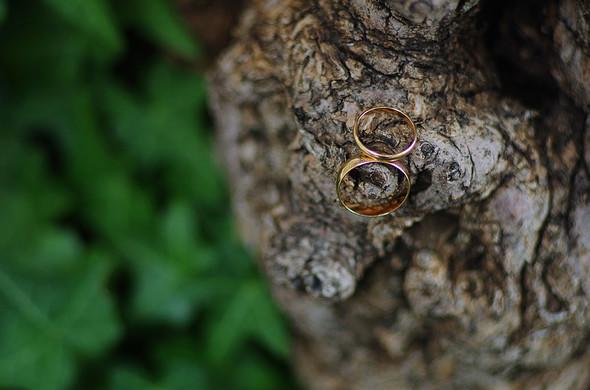 Свадебная фотосьемка в Межигорье - фото №23
