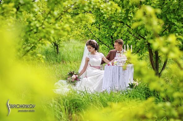 Свадебные фото в яблочном саду, г. Чернигов - фото №13