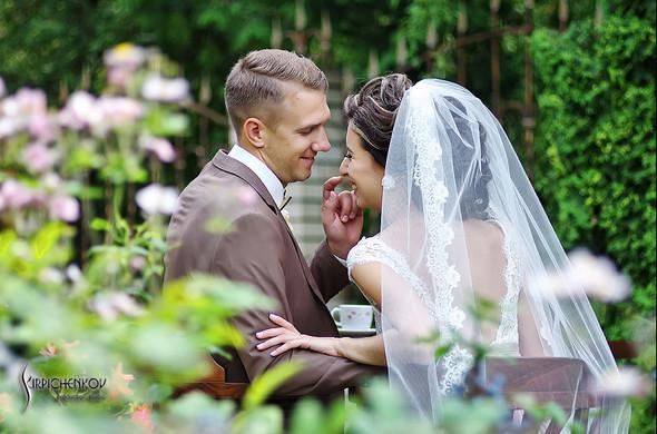 Свадебные фото в яблочном саду, г. Чернигов - фото №40
