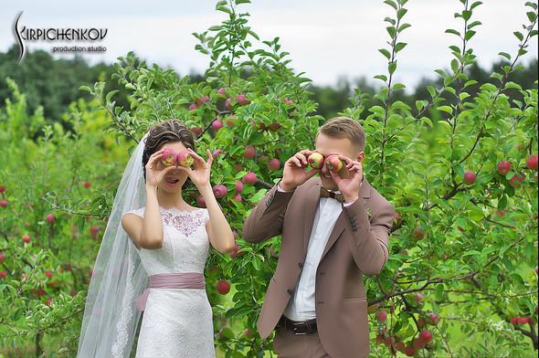 Свадебные фото в яблочном саду, г. Чернигов - фото №26