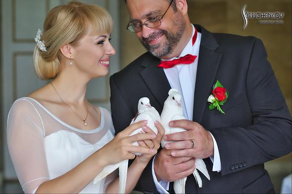 Свадебные фото на море в Одессе, фото в Оперном театре и на маковом поле - фото №99