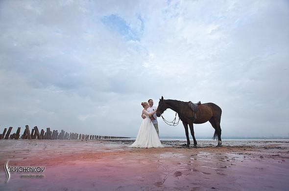 Свадебные фото на море в Одессе, фото в Оперном театре и на маковом поле - фото №35