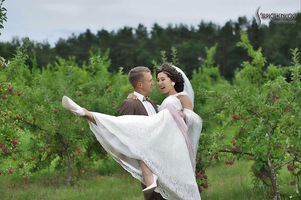 Свадебные фото в яблочном саду, г. Чернигов - фото №25