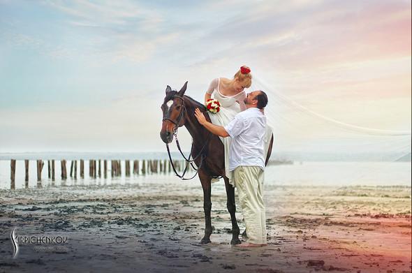 Свадебные фото на море в Одессе, фото в Оперном театре и на маковом поле - фото №33