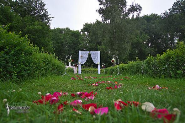 Свадебные фото в яблочном саду, г. Чернигов - фото №48