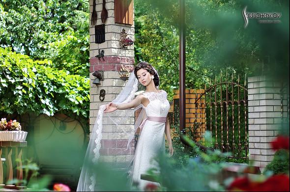 Свадебные фото в яблочном саду, г. Чернигов - фото №33