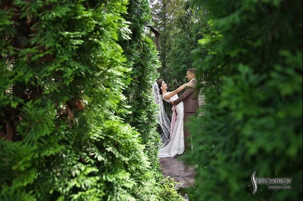 Свадебные фото в яблочном саду, г. Чернигов - фото №34