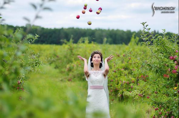 Свадебные фото в яблочном саду, г. Чернигов - фото №27