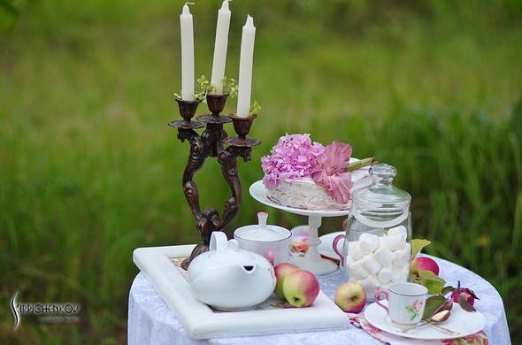 Свадебные фото в яблочном саду, г. Чернигов - фото №17