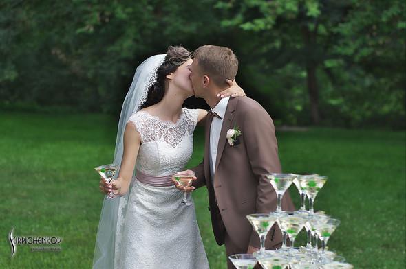 Свадебные фото в яблочном саду, г. Чернигов - фото №67
