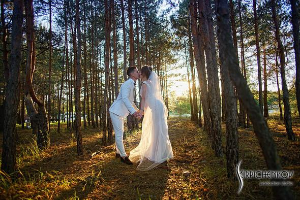 Свадебные фото на территории Соби Клаб, выездная церемония - фото №90