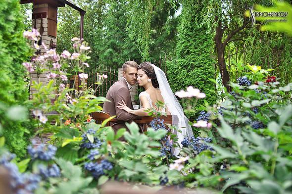 Свадебные фото в яблочном саду, г. Чернигов - фото №39