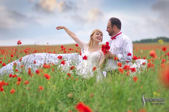 Свадебные фото на море в Одессе, фото в Оперном театре и на маковом поле - фото №42