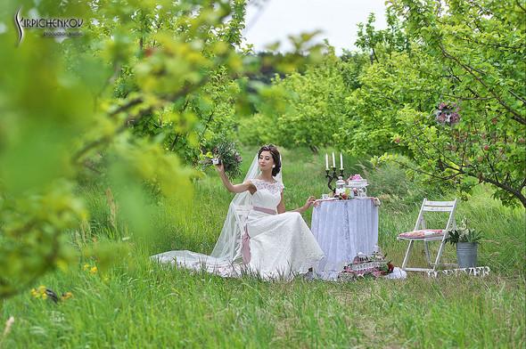 Свадебные фото в яблочном саду, г. Чернигов - фото №10
